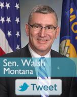 MT - Walsh