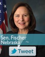 NE-Fischer